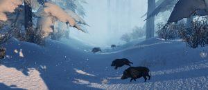 boar-game